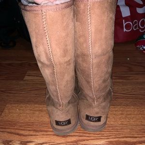 Tall chesnut uggs